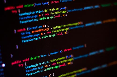 Zaměření: programátor